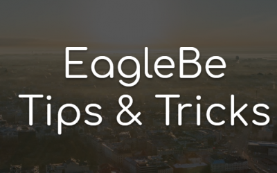 Webinar – Tips & Tricks